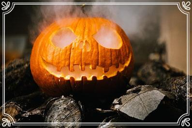 Dekorationsideen zu Halloween finden auf Amazon