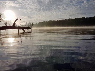 Sonnenaufgang am See, Nebel über See