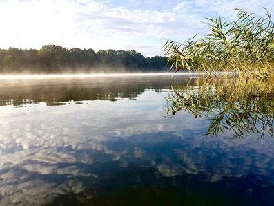Spätsommer am See, Nebel über dem See