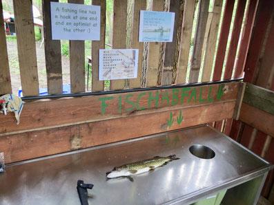 Fischputzplatz, Fischreinigungsplatz