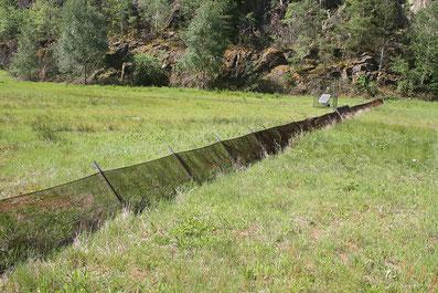 Barrière à amphibiens et travaux