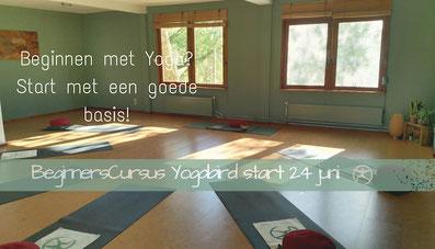 beginnerscursus yoga in gouda afbeelding van studio yogabird op goudasfalt