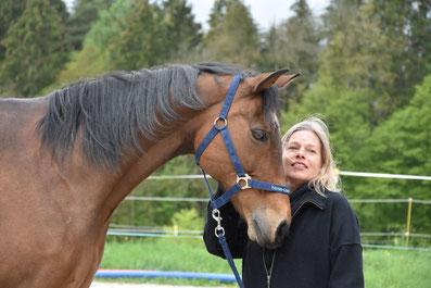 Schnuppercoaching mit Pferden - www.horse-feedback.ch - Monica Giedemann
