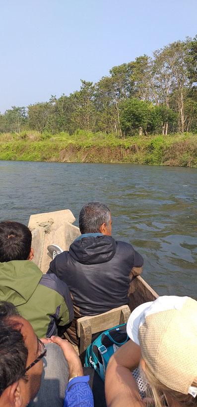 Unser Guide hält Ausschau nach weiteren Krokodilen