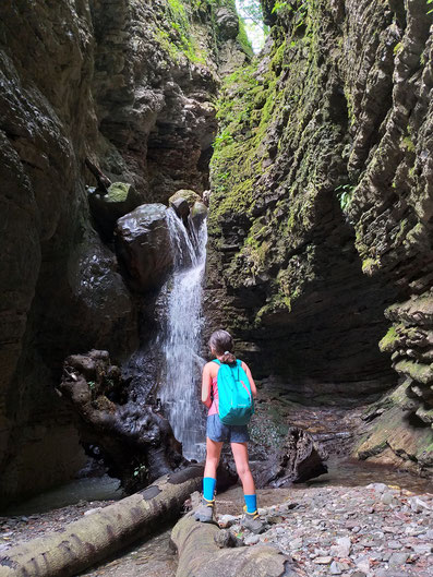 Wasserfall Koseka Schlucht Slowenien