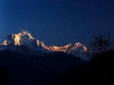 Dhaulagiri in der Morgensonne; Foto: © Klaus Hessenauer