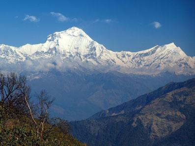 Dhaulagiri und Tuckuche-Peak (rechts); Foto: © Klaus Hessenauer