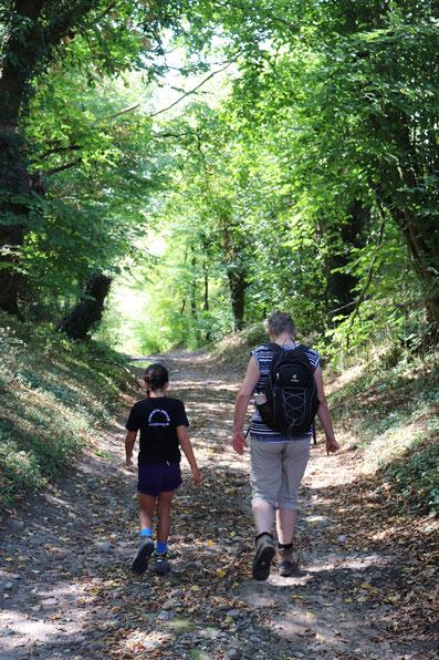 Wandern im Münsterland Hohlweg