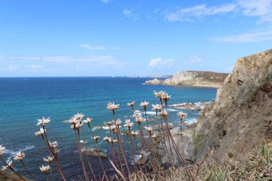 Ausblick Atlantik Küstenwanderweg Bretagne