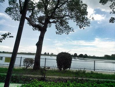 伊丹市瑞ヶ池