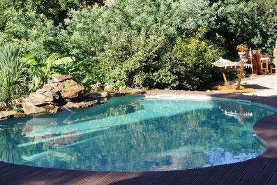 piscine-naturelle-bois