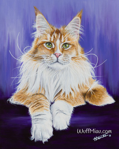 """Main Coon """"Sweet Proud Tigers Kassandra"""", Fotovorlage Cat'chy Images"""