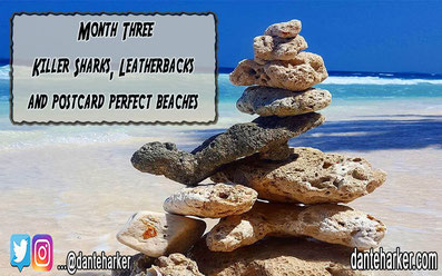 Month three - Killer Sharks, Leatherbacks and postcard perfect beaches