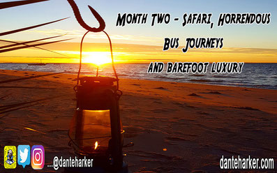 Month two - safari, horrendous bus journeys and barefoot luxury