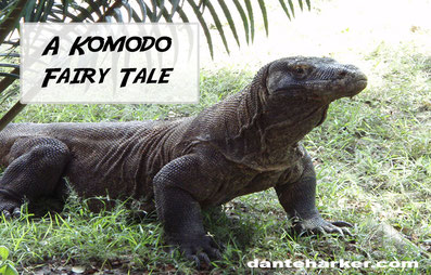A Komodo Fairy Tale