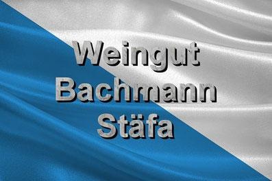 Fly and Wine, Helikopterflug mit Weindegustation, Wappe Zürich, Weingut Bachmann