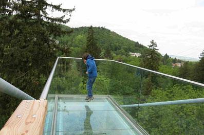 Baumwipfeldpfad Bad Harzburg: Glassteg für Schwindelfreie