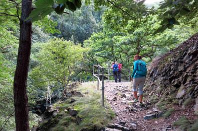 Das Bodetal: Schöner kann man im Harz nicht wadern