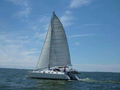 Alliaura Marine Privilege 39 Catamaran