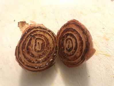 Die Zwiebeln sollten an der Schnittfläche schön braun sein
