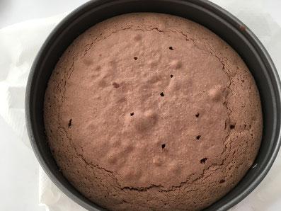 Den Kuchen aus der Springform lösen