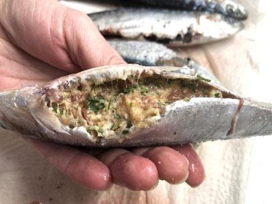 Die Fische mit der Masse füllen