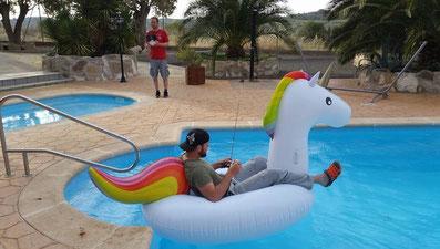 Einhorn im Pool