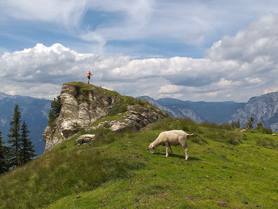 Hiking in the Schladming Dachstein region