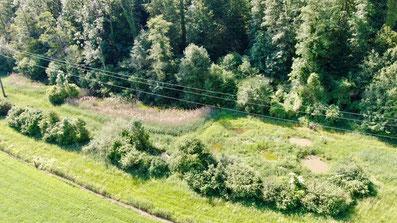 Naturschutzgebiet Judenweiher in Rheinfelden