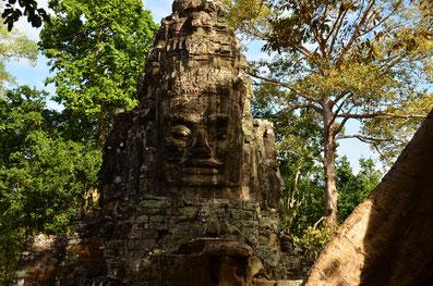 Siem Reap, Kambodscha, Pubstreet, Südostasien, Zwei auf Achse, Backpacking, Weltreise, Asien, Angkor Wat, Phnom Penh,