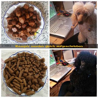 Hunde Leckerchen