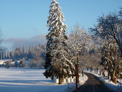 ideale familievakantie zon en sneeuw