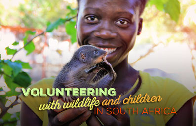 Volunteering with Wildlife and Children in South Africa | JustOneWayTicket.com