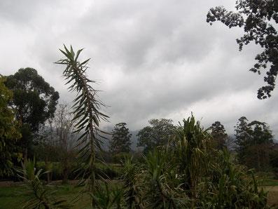 Ezulwini, Eswatini
