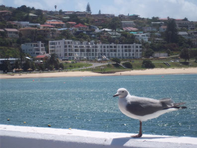 Mossel Bay, Südafrika