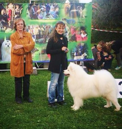 GUELFO BEST IN SHOW Expo reg. Follonica 2013