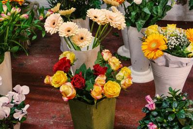 Blumen-Rose | Schnittblumen