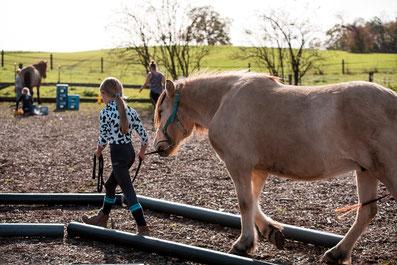 Reiterspiele, Kinder, reiten lernen, Selbstbewusstsein, Pferden wirken heilsam, Kinderkurs mit Pferden, Pony, Pferde pflegen