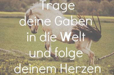 Beziehung Fortbildung mit Pferd Coaching mit Pferden therapie Pferdecoaching pferdegestützte Ausbildung Ziel klarheit Beruf Coach Liebe