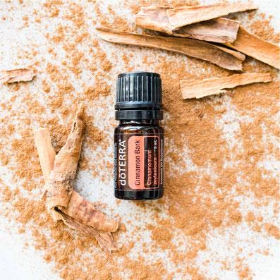 Aroma Welt >> doTERRA Cinnamon Öl - Deutsch Zimt: Wirkung, Anwendung, Beratung, Rezepte