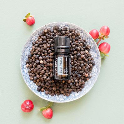 Aroma Welt >> doTERRA Black Pepper Öl - Deutsch Schwarzer Pfeffer: Wirkung, Anwendung, Beratung