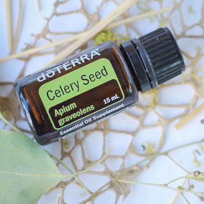 Aroma Welt >> doTERRA Celery Seed - Deutsch (Selleriesamen Sellerieöl): Wirkung, Anwendung, Beratung, Rezepte