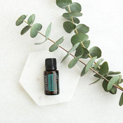 Aroma Welt >> doTERRA Eucalyptus Öl - Deutsch (Eukalyptus): Wirkung, Anwendung, Beratung, Rezepte
