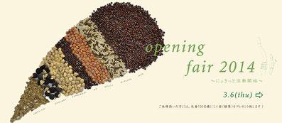 Opening Fair 2014