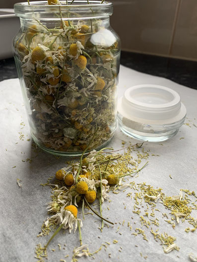 chamomile for gifts
