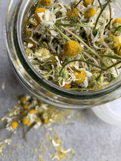 Dry chamomile goes into recycled coffee jars.