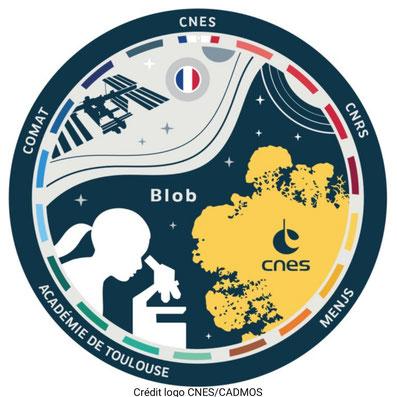 Bien en classe Mission Alpha Thomas Pesquet Elève ton blob  Projet Blob-Terre CNES CADMOS CNRS Mission X Marche vers la Lune sciences astronomie expériences école classe cycle 2 cycle 3 collège lycée