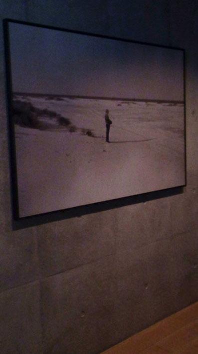 海辺に佇む鈴木大拙氏の写真
