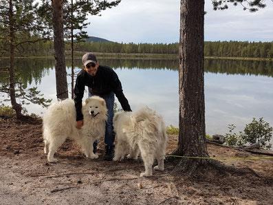 Samojede Schweden Skandinavien Team Wolf78-overland #ProjektBlackwolf vanlife offroad overland expedition roadtrip wolf78 4x4 #borntoexplore #explorewithoutlimits #driveyourownway #borntoroam