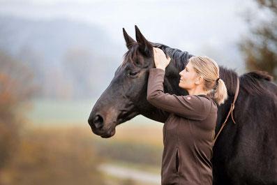 Tierarzt, Tierärztin, Chiropraktik, Pferd
